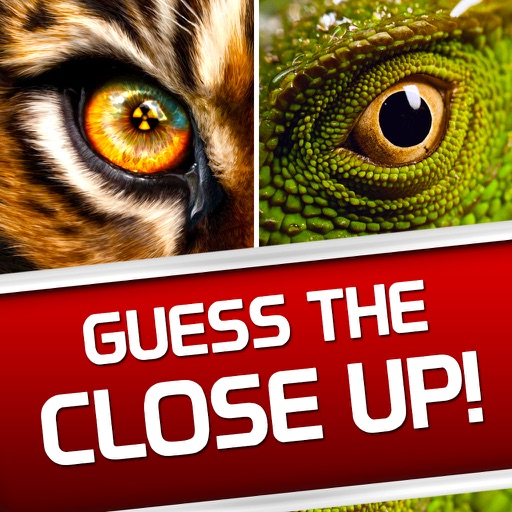 Guess The Close Up Photo Trivia Quiz Word Game By Are