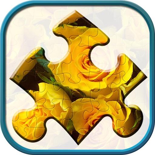 Jigsaw Puzzles King iOS App