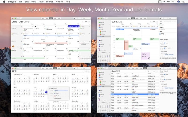 BusyCal 3 - Calendar, Reminders & To Dos Screenshots