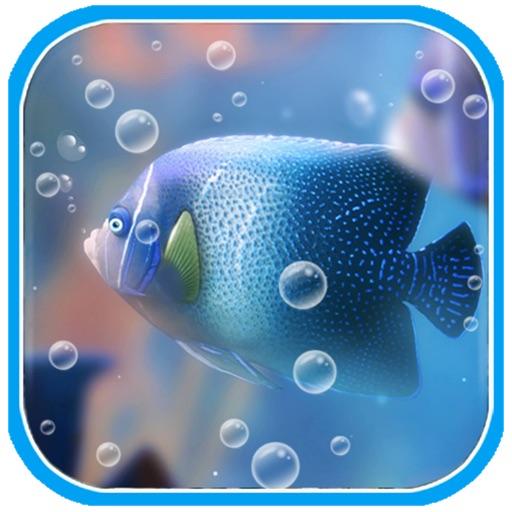 Crazy Fish Picture Free iOS App