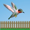 Flappy Hummingbird!