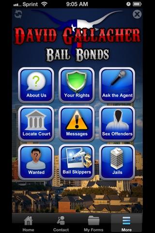 David Gallagher Bail Bonds screenshot 3