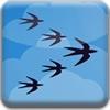 鸟儿南飞-天天益智游戏 icon
