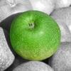 照片編輯顏色效果 - 選擇詳細信息上圖片至加緊閃耀光