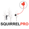 Squirrel Hunting Strategy - Squirrel Hunter Plan