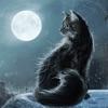 North Windford ~ Sleep Relax Meditate
