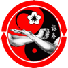 Step By Step Guide To Wing Chun