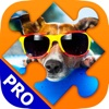 Dogs Jigsaw Puzzle Game. Premium