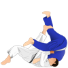 Step By Step Guide To Judo