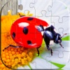 Insect puzzles - Relaxing photo picture jigsaw puzzles for kids and adults kids online puzzles