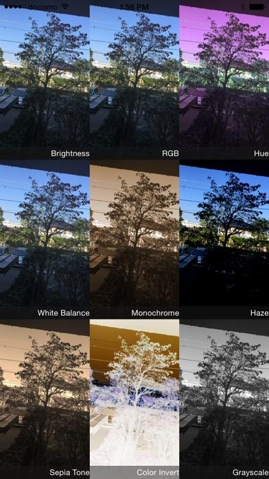 万華鏡をシェイクして選ぶ華麗度カメラ screenshot1
