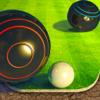 Shot Bowl