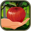 Don't Tap the Bad Apples - Fruit Dash- Pro