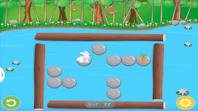 Bunny Puzzle-3