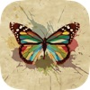 Butterfly Wallpapers, Backgrounds & Themes - Download Free HD Images of the Best Beautiful Butterflies You've Ever Seen!