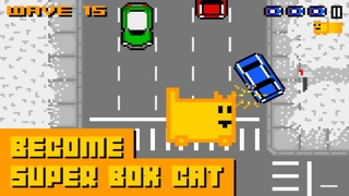 Box Cat Screenshot 3