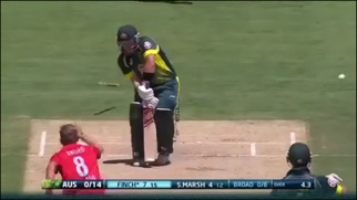 download ICC Cricket World Cup 2015 Highlights apps 2