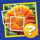 Mosaïque: Tap 1 image et devinez 1 mot! icon