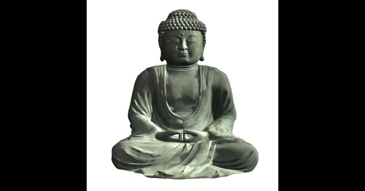 progressive scan meditation guided meditation with zen master nissim amon meditate with. Black Bedroom Furniture Sets. Home Design Ideas