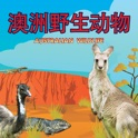 澳洲野生动物 Australian Wildlife icon