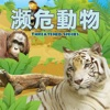 濒危动物 Threatened Species