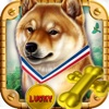 Super Lucky Shiba Slots Way 2016: The real European las vegas casino bonanza journey