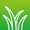Grass Photos - albums download download photos sender