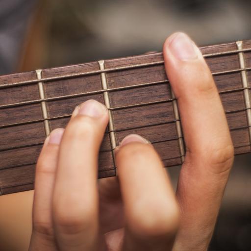 Guitar Chords Master Class By Julian Bebell
