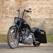 Harley Davidson Catalog