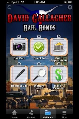 David Gallagher Bail Bonds screenshot 4