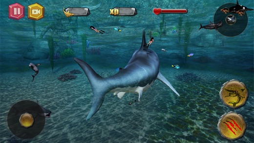 Shark io Screenshot