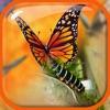 Kombinieren Kamera Effekt - Bearbeiten und Dekorieren Bilder mit Spezial Effekten in Bild Editor