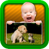 Baby Video - Tiere