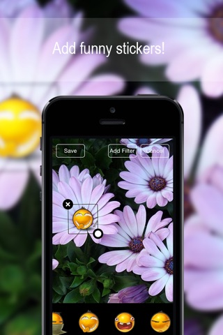 Customizable Flower Wallpapers HD Free ! screenshot 4