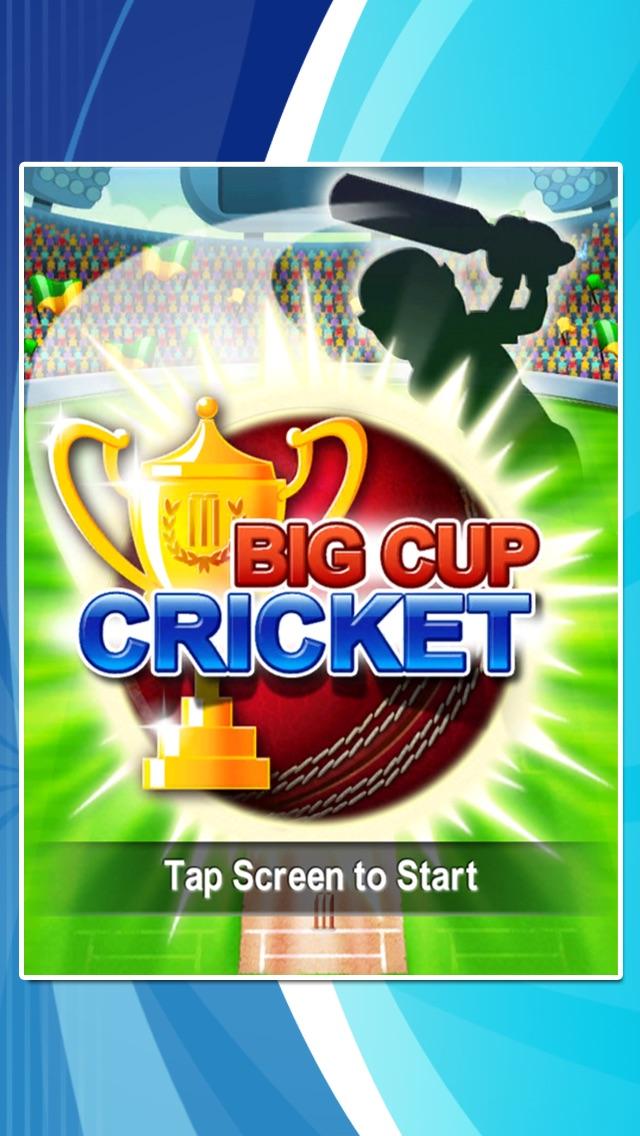 Big Cup Cricket-0