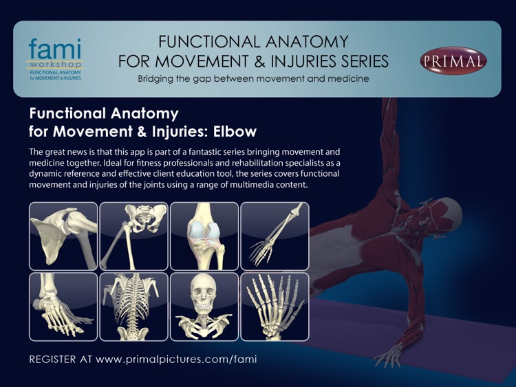 Functional Anatomy for Movement and Injuries: Elbow by Primal ...