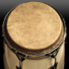 Conga Drums Free