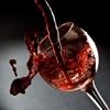 葡萄酒百科 红酒大全免费版HD
