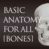 basic anatomy for all [bones]