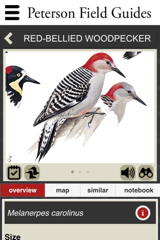 Peterson Field Guides - Backyard Birds screenshot 4