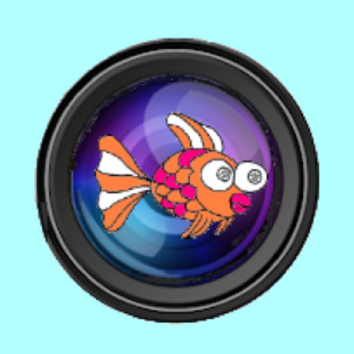 Fish Eye lens camera