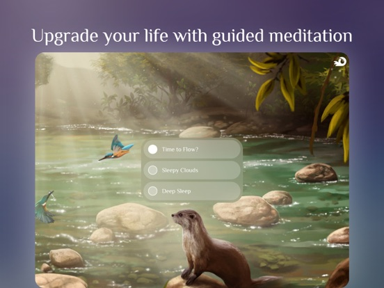 Flowing ~ Meditation & Mindfulness Screenshot