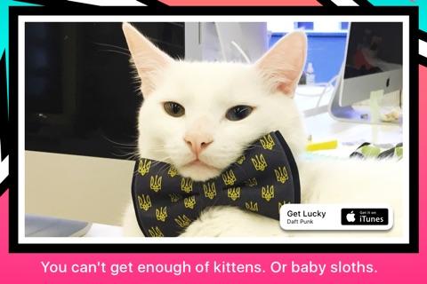 GIFtv: Endless GIF Reel screenshot 2