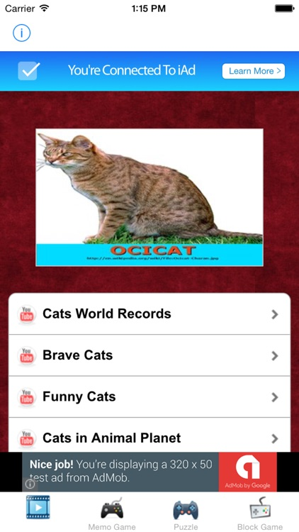 learn english via cats kittens names games for kids lite screenshot 3
