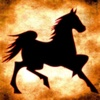 Horse - Racing Calculator for iPad