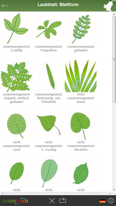 3000 pflanzen bestimmen naturetouch im app store. Black Bedroom Furniture Sets. Home Design Ideas