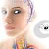 CAT MEDIC – Medizin in Bildern
