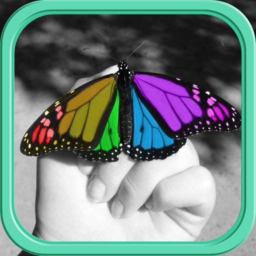 Color Effects FX HD Free – ReColor & Splash Photo Effect Editor for FB,gmail