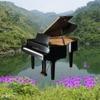 浪漫的钢琴曲 Piano Songs[雪峰音乐]