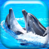 Dolphin Wallpaper HD Collection – Lovely Ocean Themes And Cute Retina Backgrounds